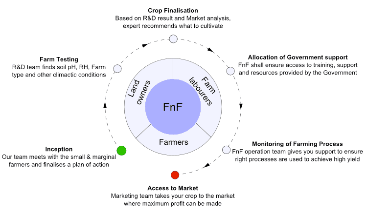 FnF working model